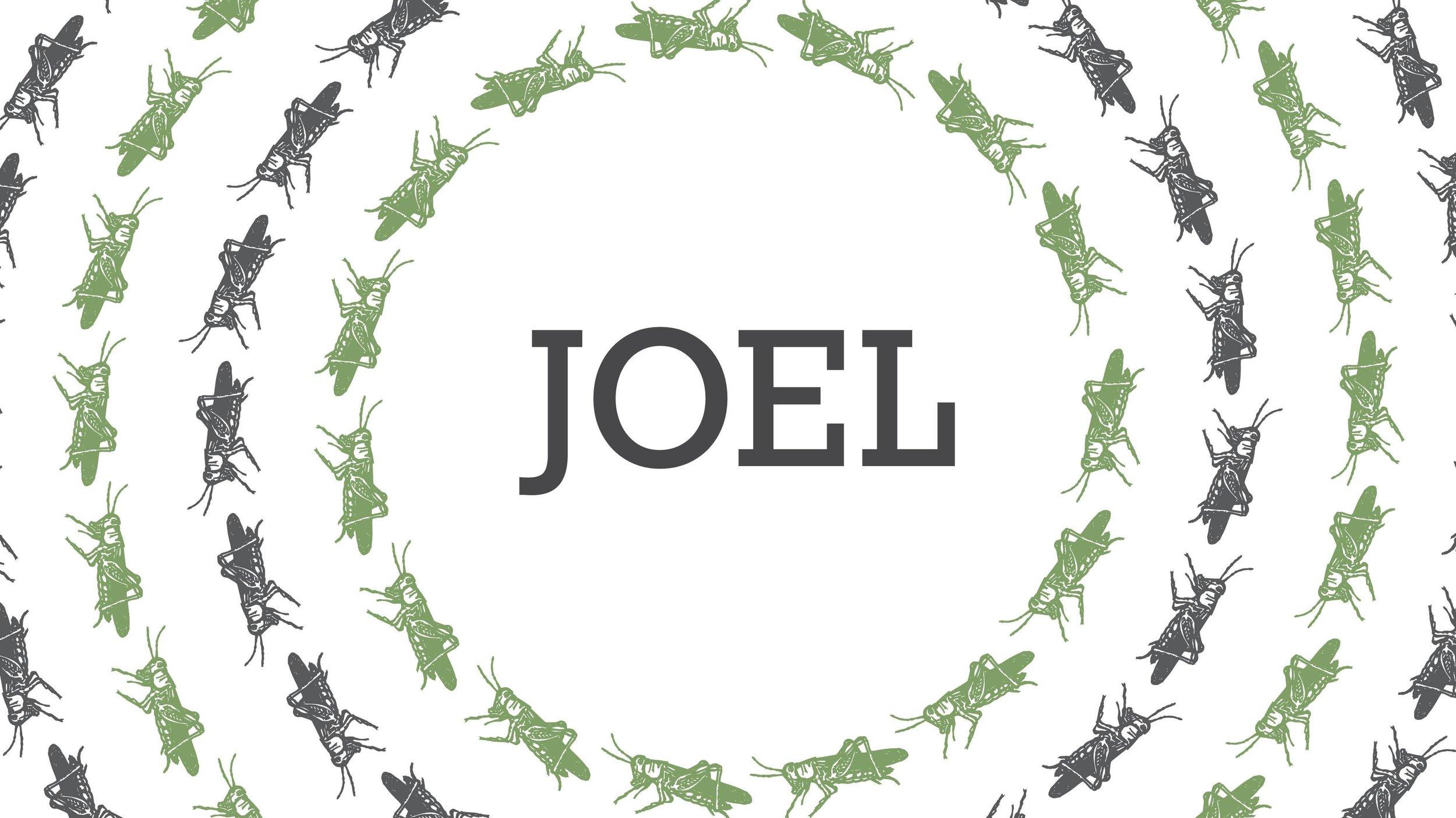 Joel - 4/8/18–6/6/18