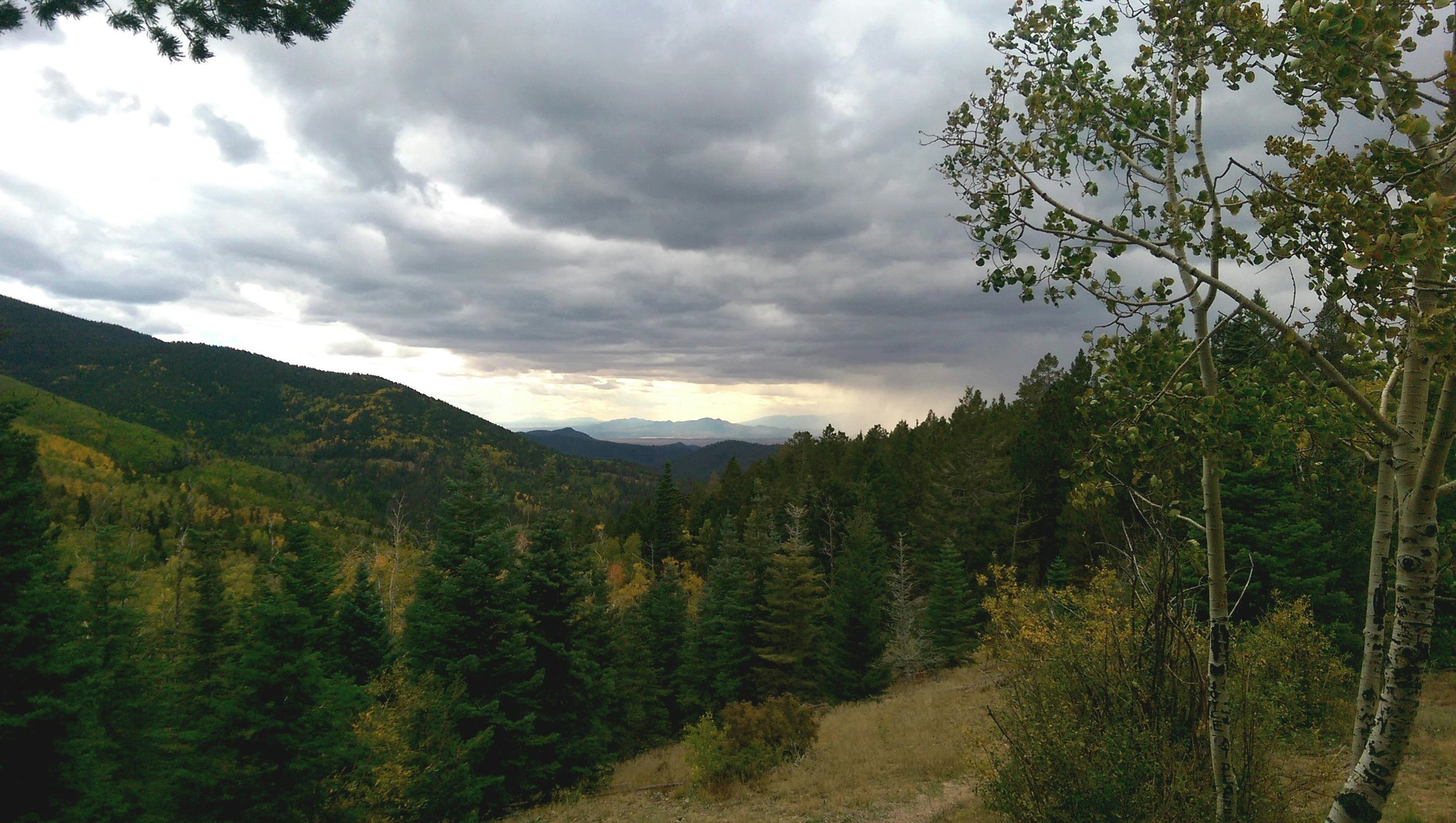 A view near where I was painting on the Santa Fe mountain