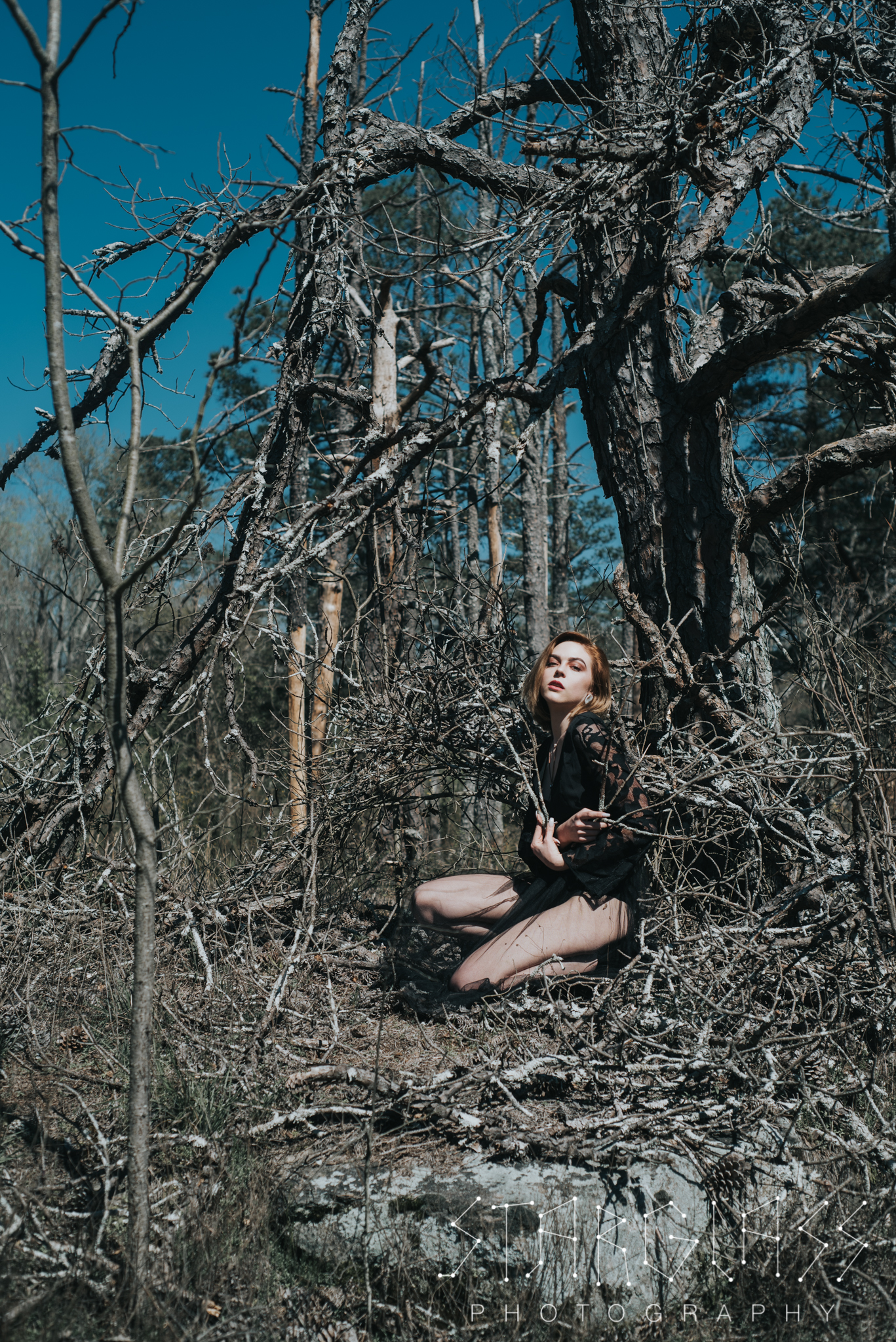 Ostara crouches among dead trees, surrounded by bare branches.