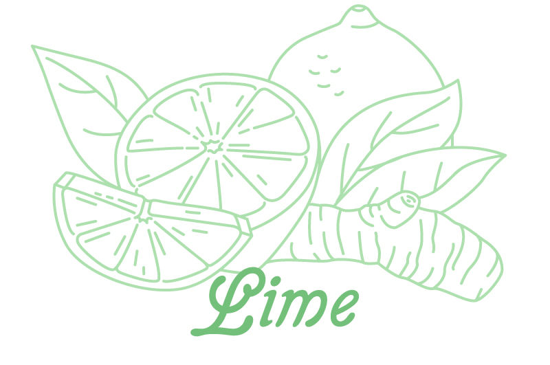 flavor_illustrations_lime.jpg