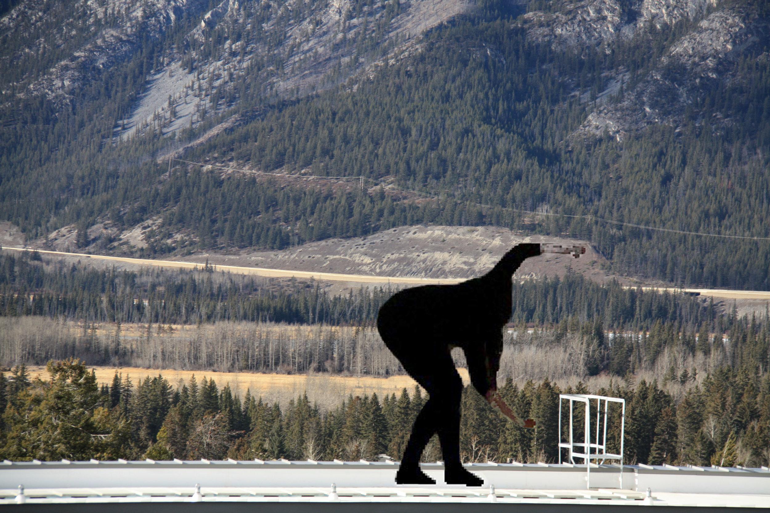 "Suzanne Morrissette,  Banff I , 2013, photograph on dibond, 67""x49""."