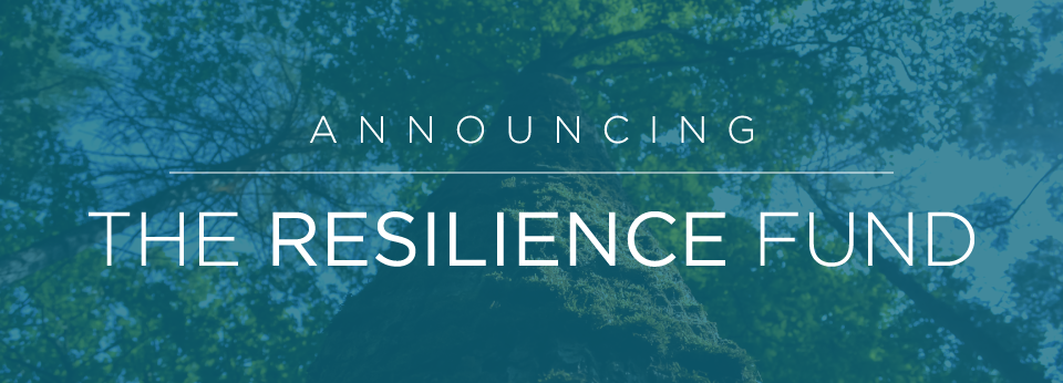 Resilience-Fund-Slider.png