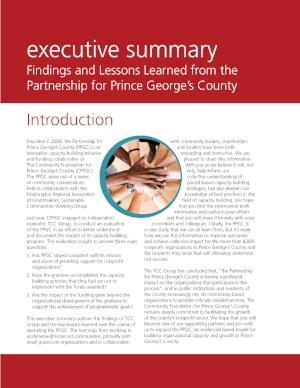 2013-PPGC-Executive-Summary_Page_01.jpg