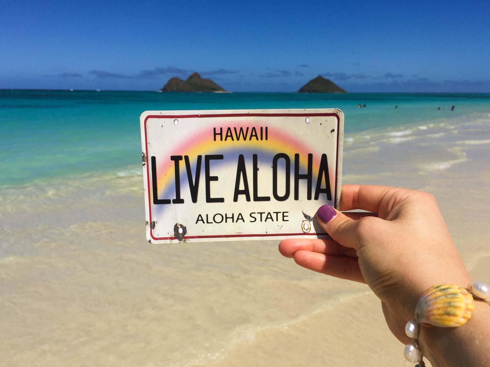 Live Aloha Postcard- photograph taken in front of the Mokes on Lani Kai Beach on Oahu