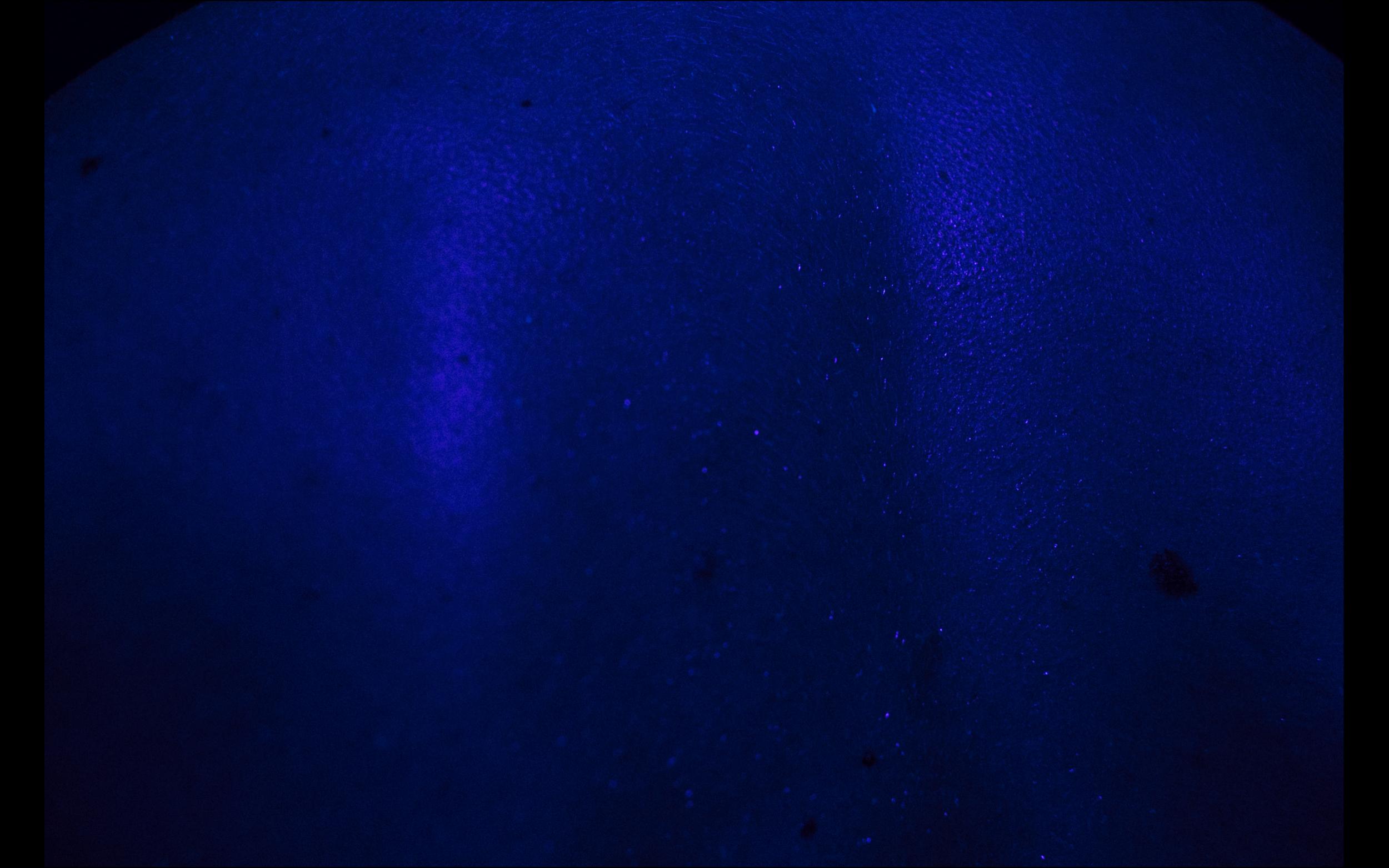Screen Shot 2018-09-10 at 20.59.26.png