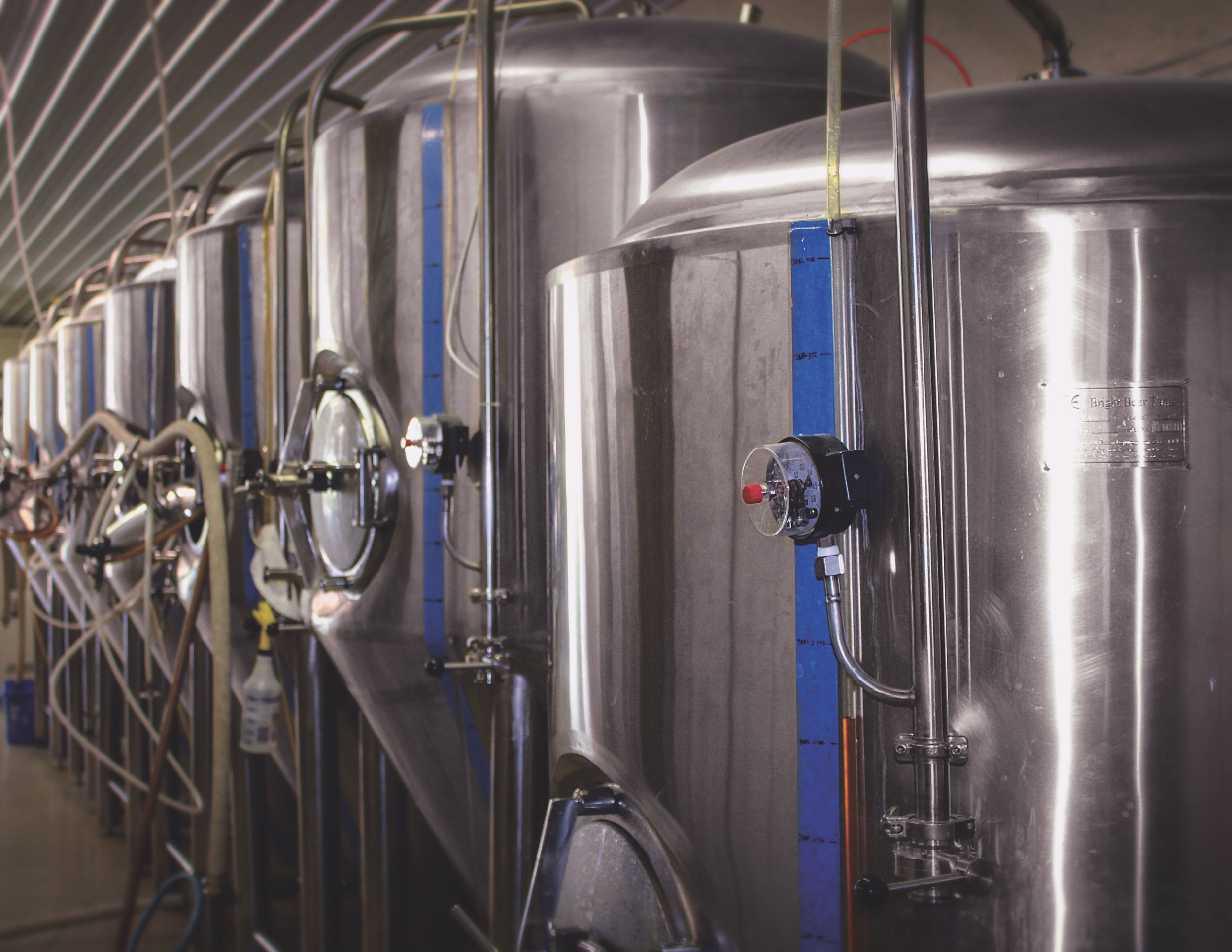 A snapshot of just one of the innovative steps of brewing beer using dairy technology.