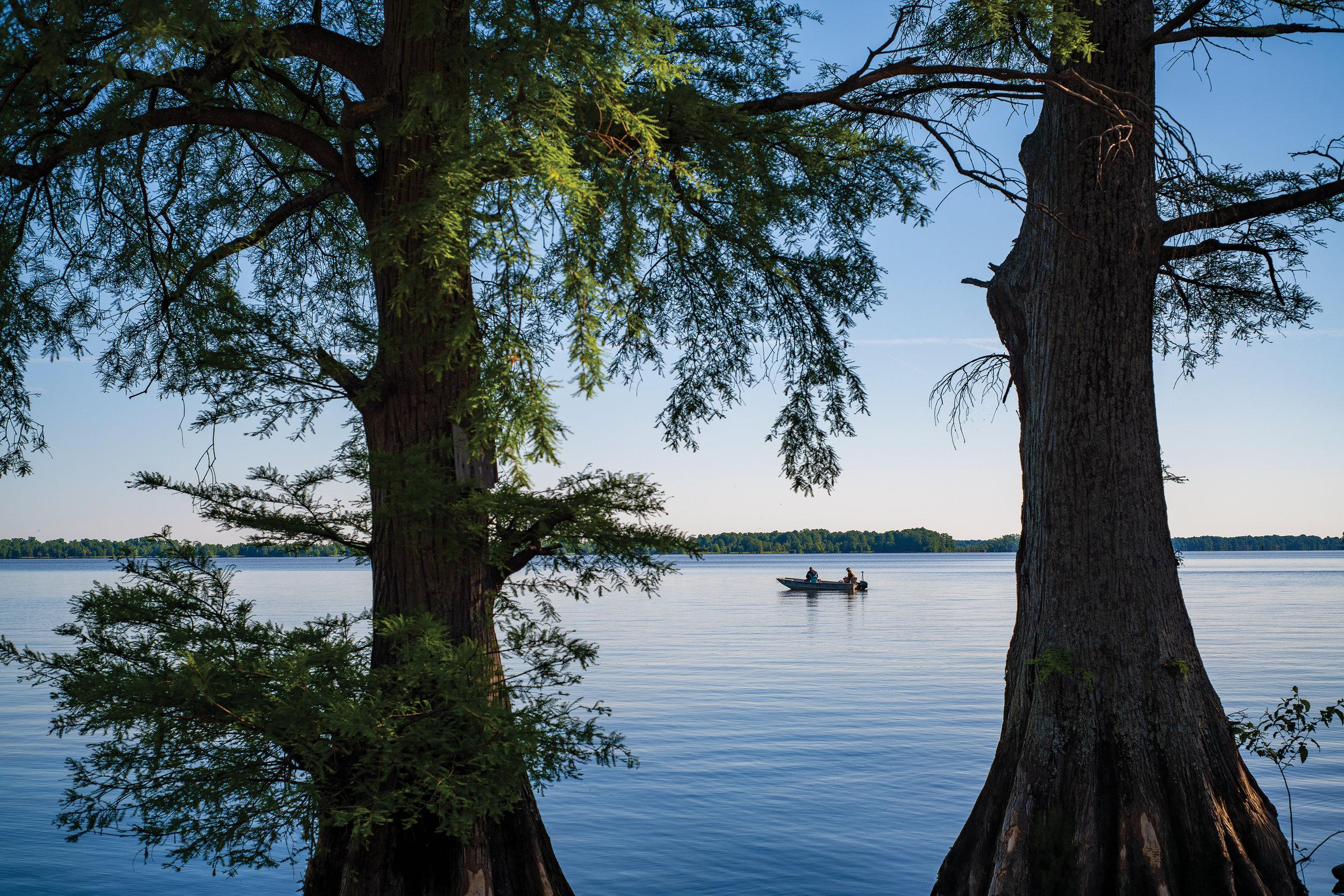 Reelfoot Lake — Cypress Magazine