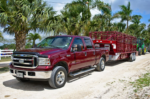 truck:car1.jpg