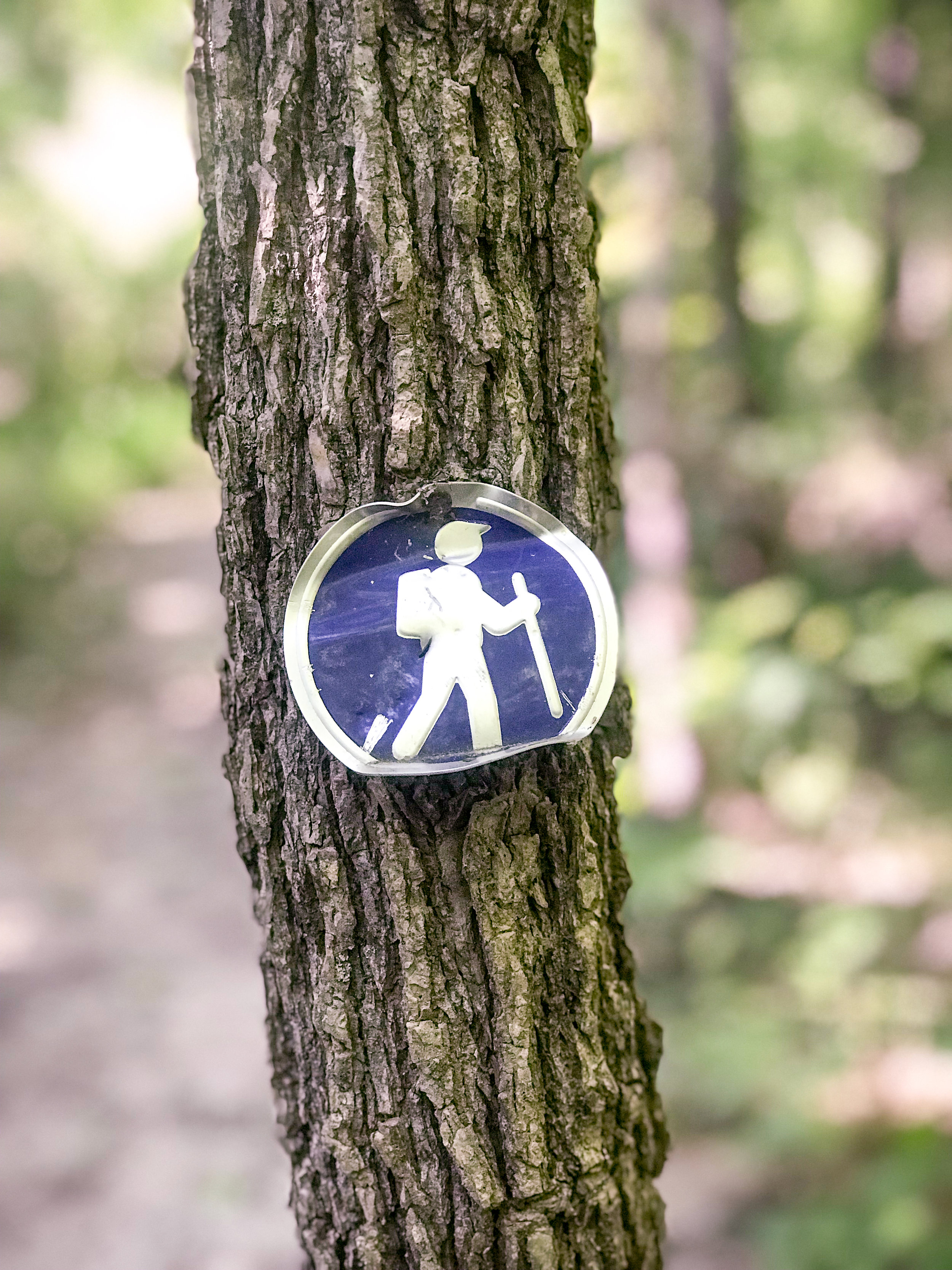A hiking trail marker on one of the trails.
