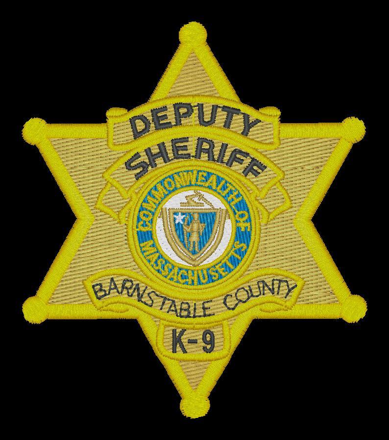K-9 Deputy Sheriff Badge SAMPLE.jpg