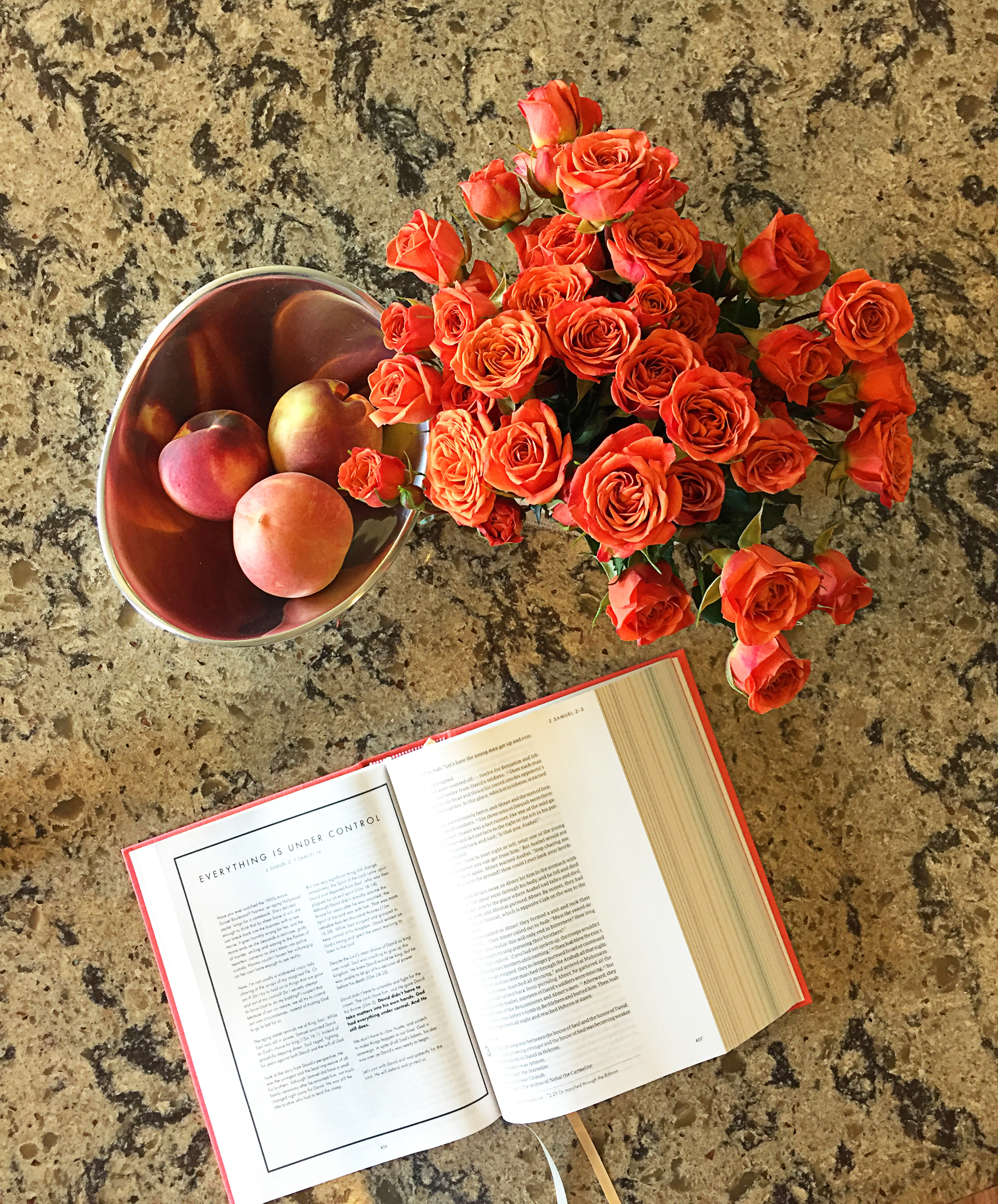 Pause. Can we please take a moment to stop and admire how perfectly those tiny roses bring out the color of the peaches? And vice-versa? And then my Bible is like the same color?!? You don't even know the mood lift this gives me every single time I look at my kitchen counter. My designer's heart can't even handle it. *swoon*