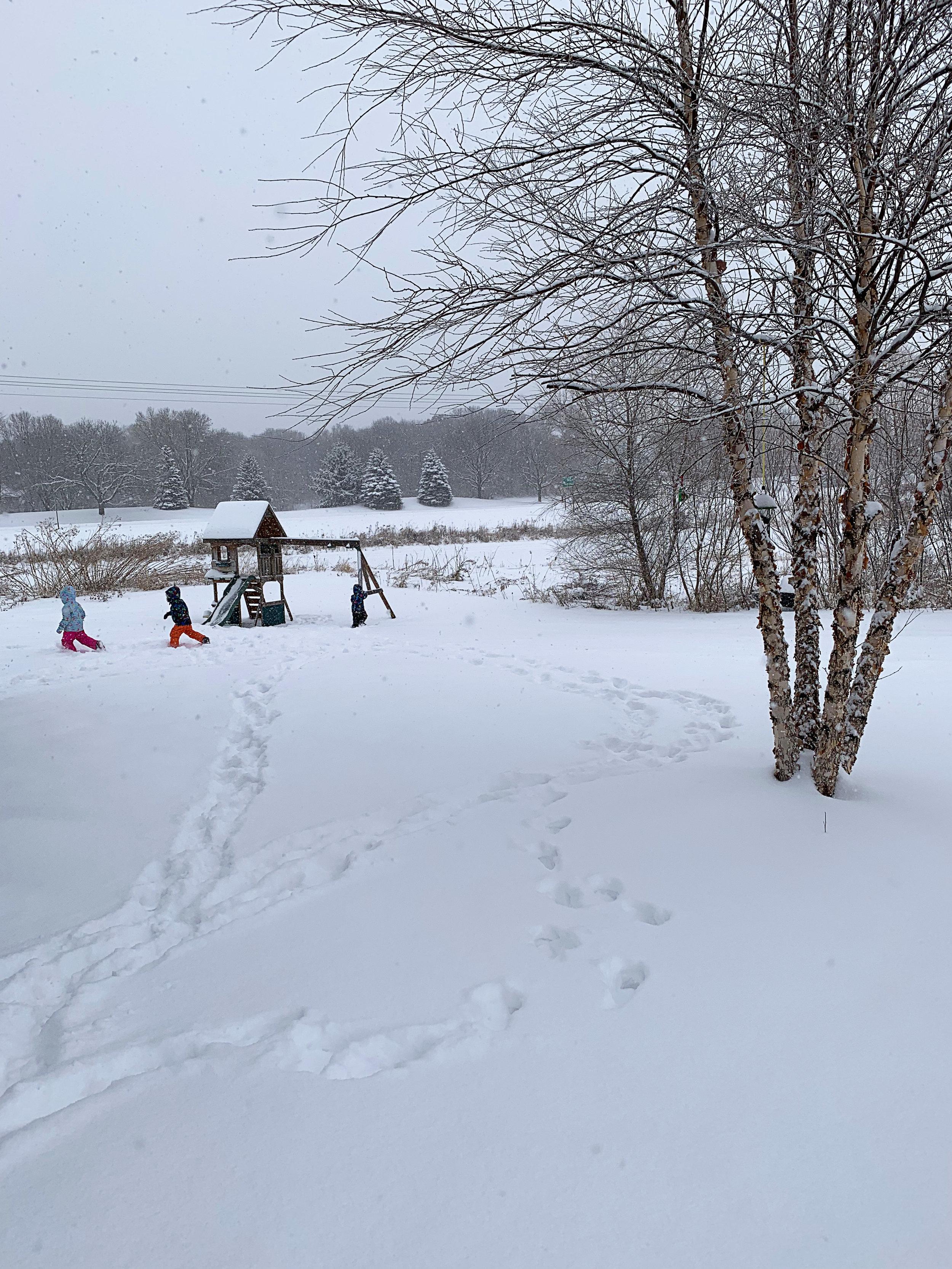 2019 02 07 All Snow 01.jpg