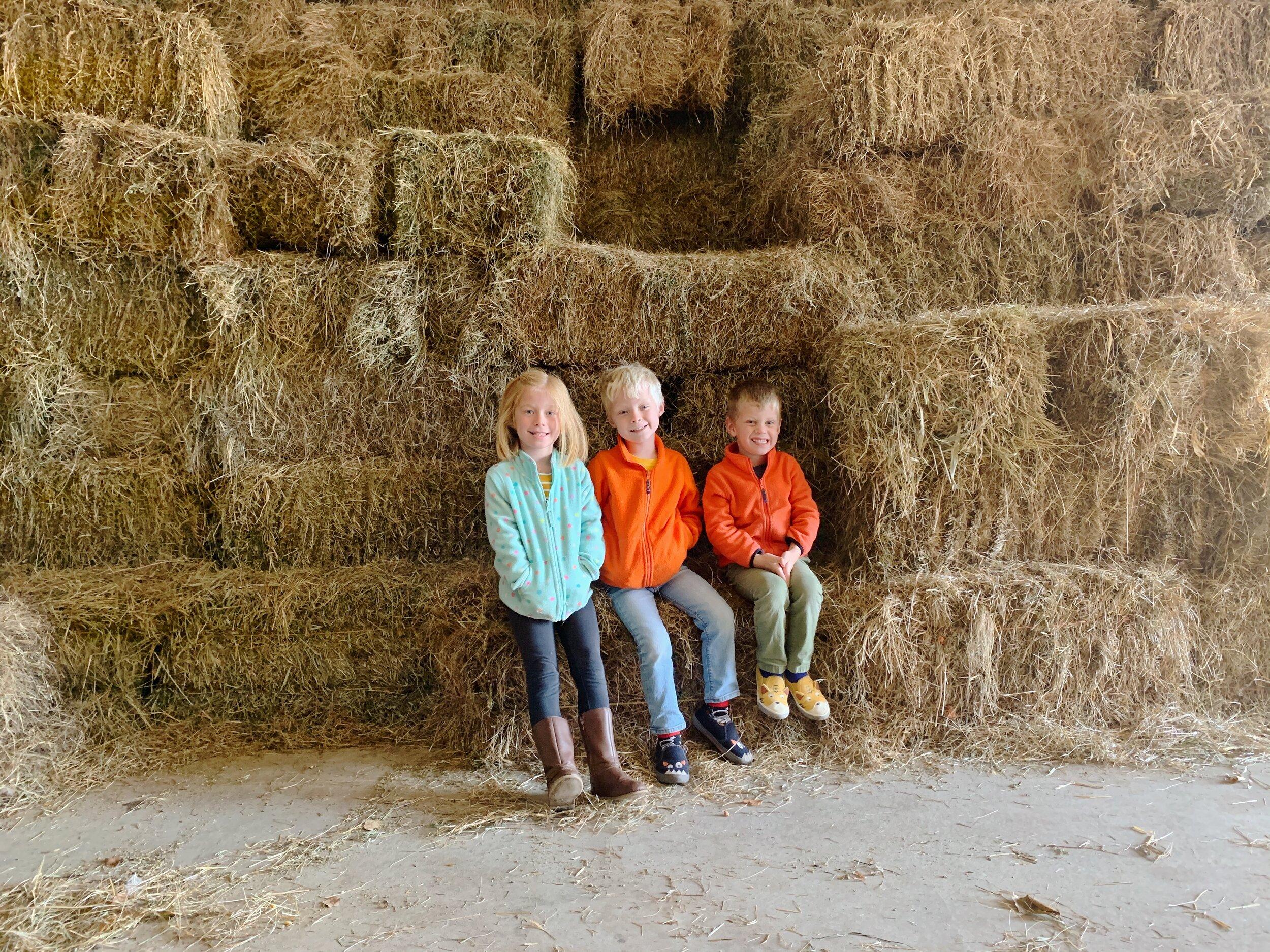 2019 10 17 All Farm 08.jpg