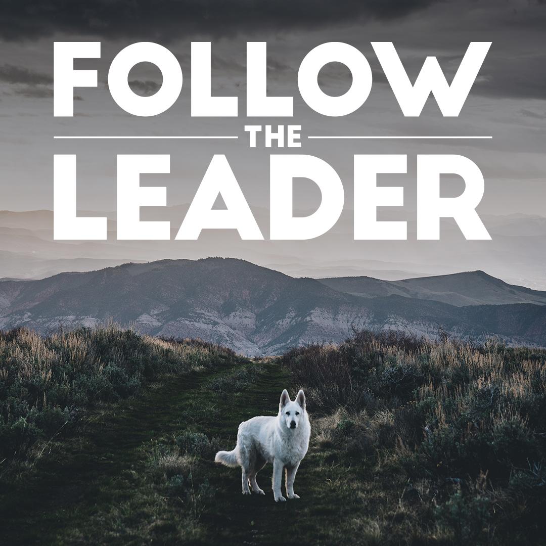 Follow-The-Leader_1080x1080.jpg