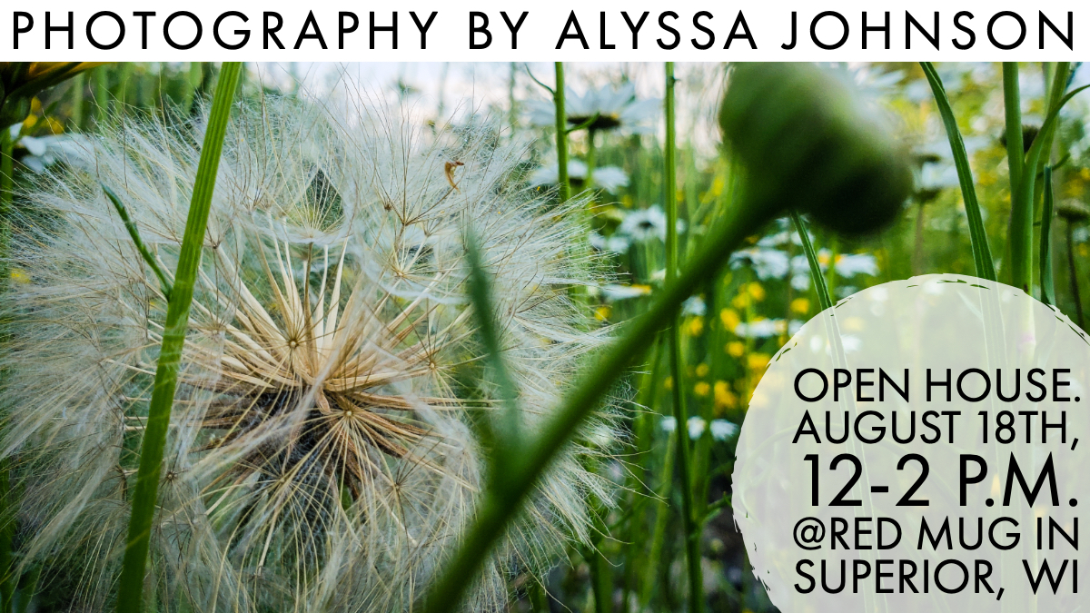 Photography by Alyssa Johnson - Duluth, Minnesota - Superior, Wisconsin - Local Photography - Open House