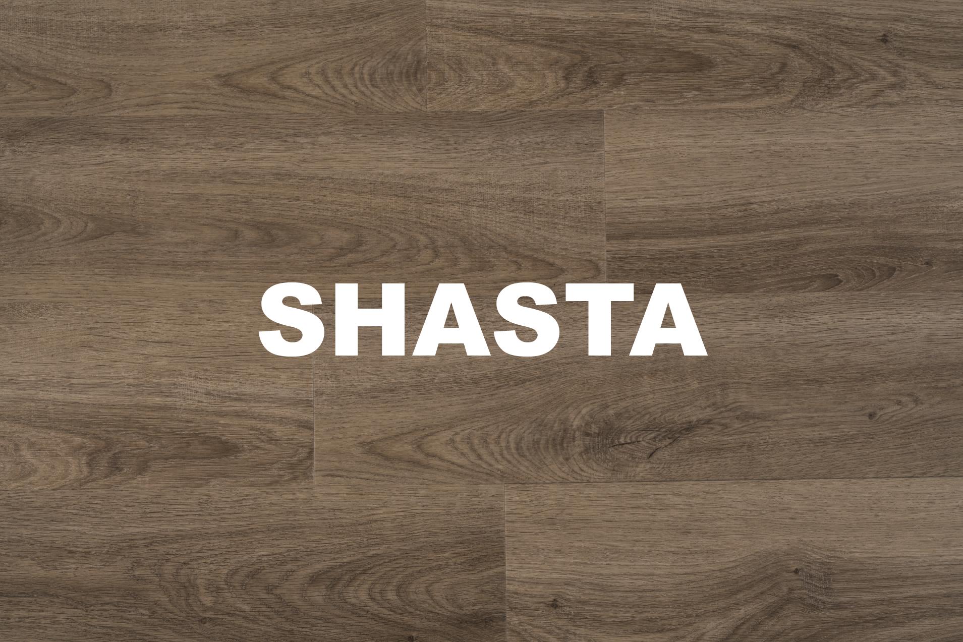 Shasta.png