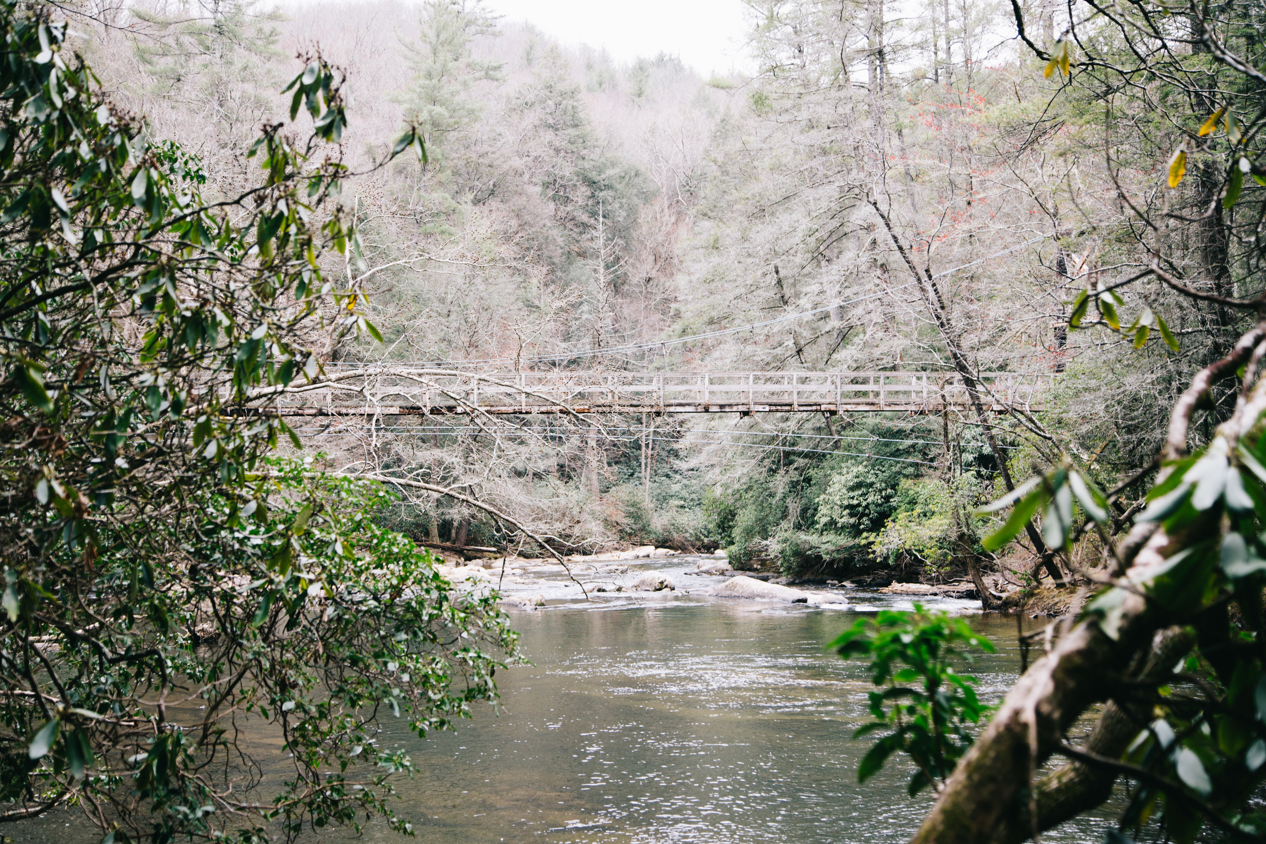 Looking for a perfect hike on your trip in North Georgia? Check out the swinging bridge over the Toccoa. Read our review on this hike at MoreDetours.com.