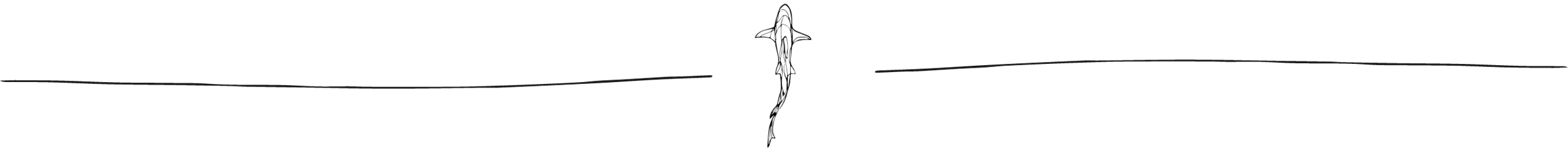 NCA Shark Illustration.png