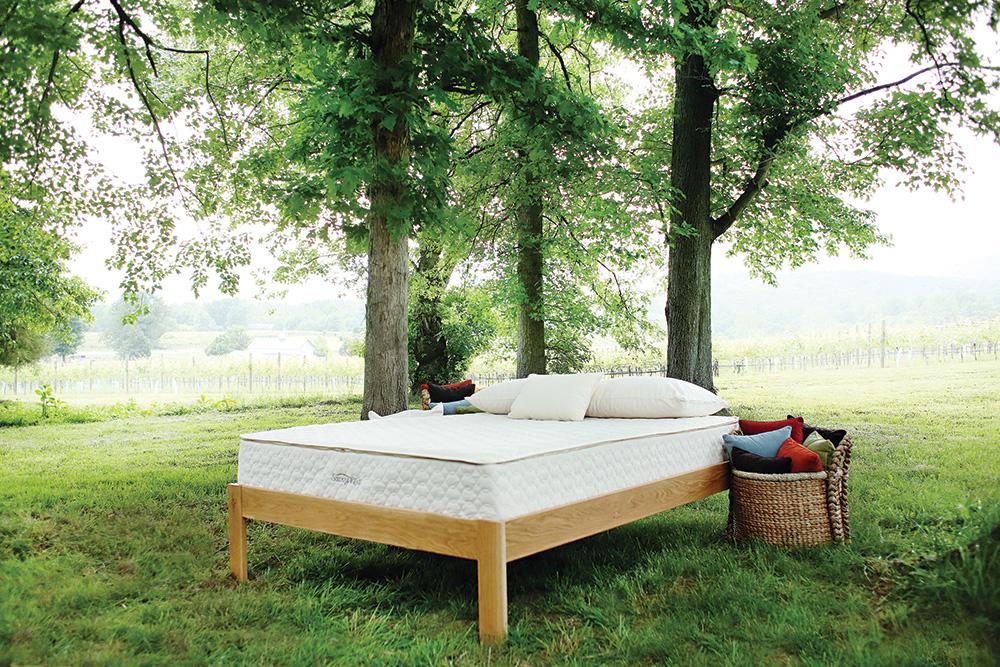 Allergy-Store-Allergy-Bedding-Mattress-Dust-GA-Mite-Products.jpg