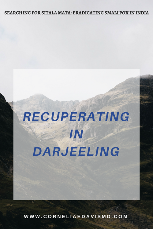 Check out my new  #Bublish  post!  https://www.bublish.com/bubble/stream/15150?share=email   #Darjeeling   #TigerHill   #MountEverest