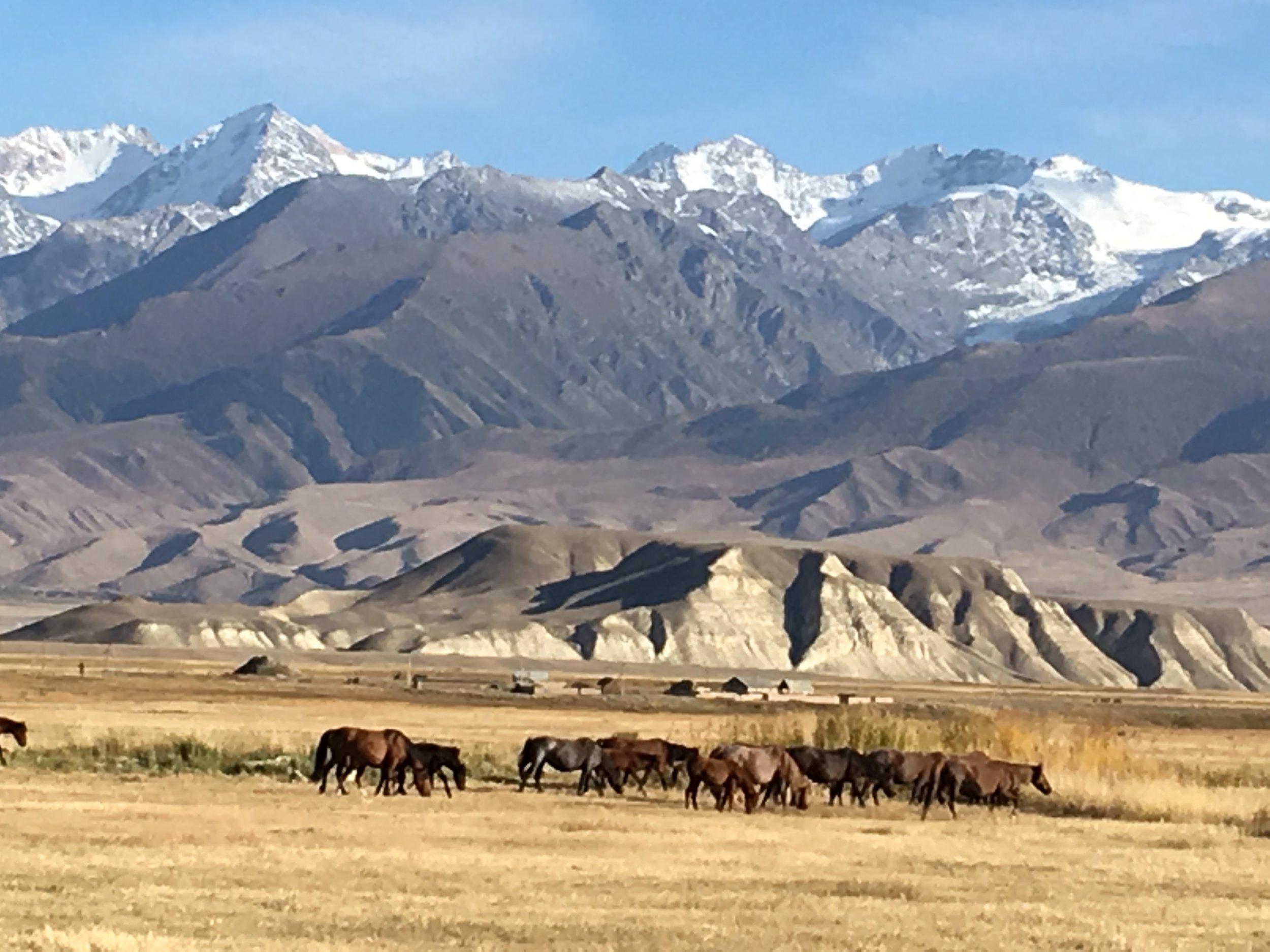 Kyrgyzstan -