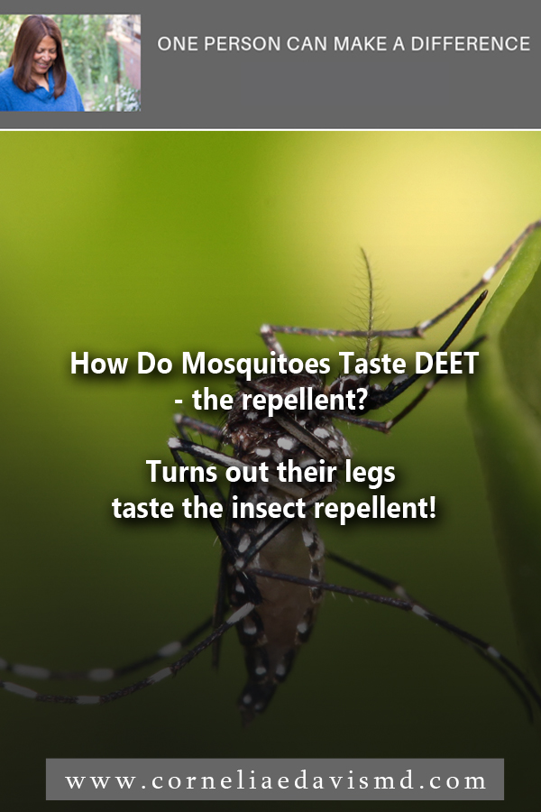 "Who could have suspected that a mosquito ""tastes"" with his legs!      Read more:  http://www.capradio.org/news/npr/story?storyid=716767256"