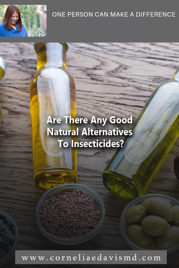 Are There Any Good Natural Alternatives To Insecticides?    Read More:  https://www.sierraclub.org/sierra/5-deet-free-ways-protect-yourself-bugs