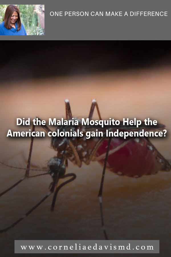 Did the Malaria Mosquito Help the American colonials Gain Independence? #malaria, #malaria prevention     https://thetyee.ca/Culture/2019/08/29/How-Mosquitos-Shaped-Humanity/
