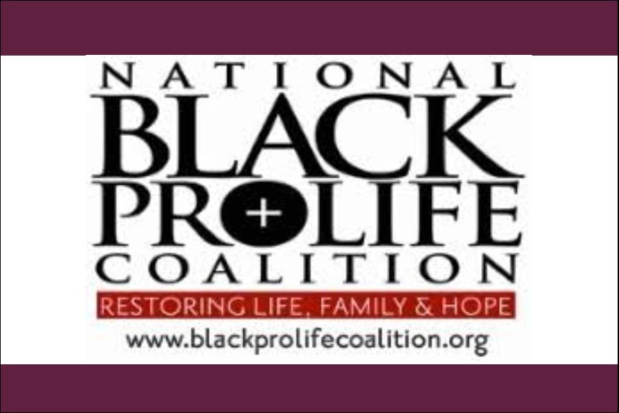 National Black Pro Life Coalition.png