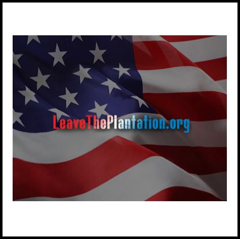 Leave The Plantation Sponsorship.png