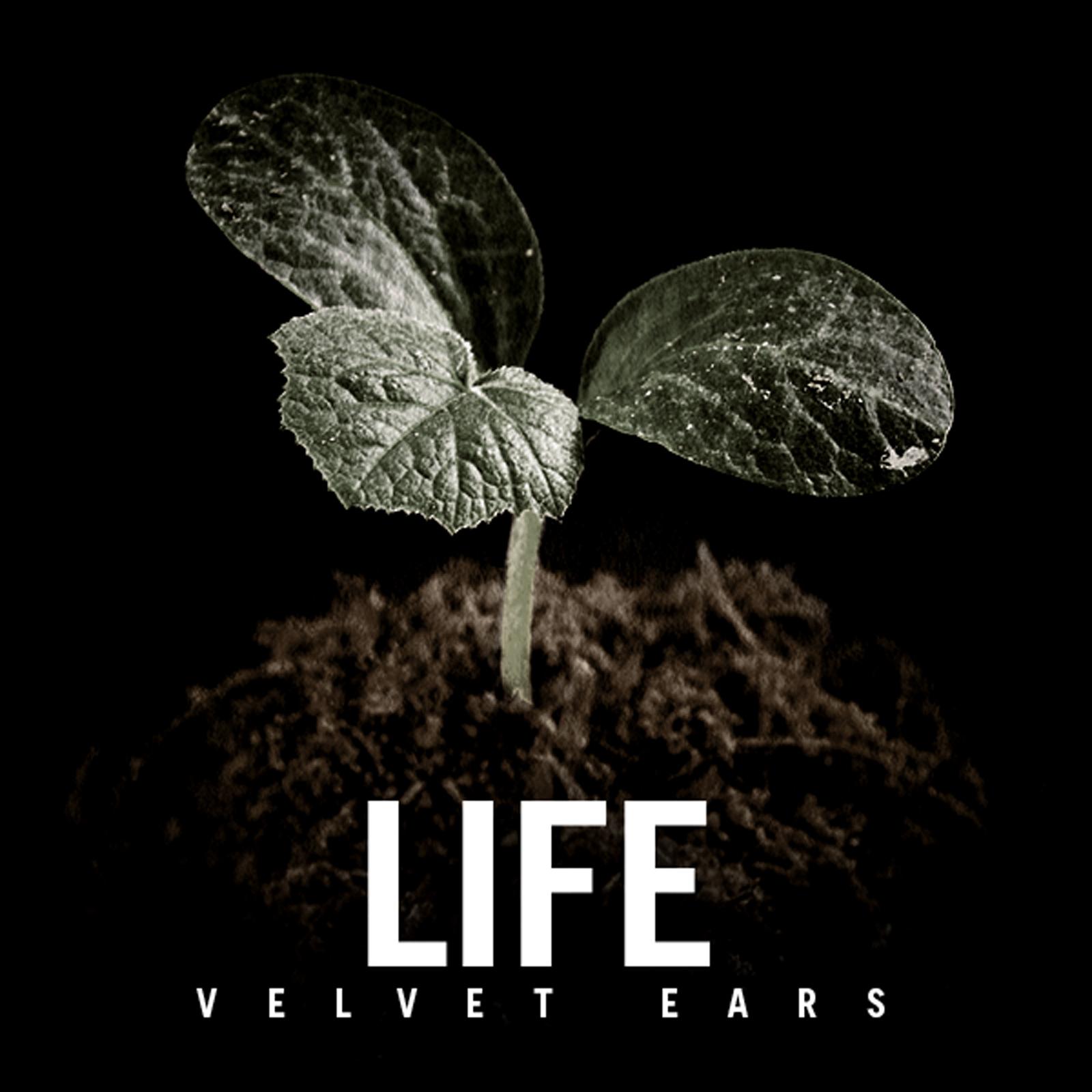 VE_Life_1600.jpg