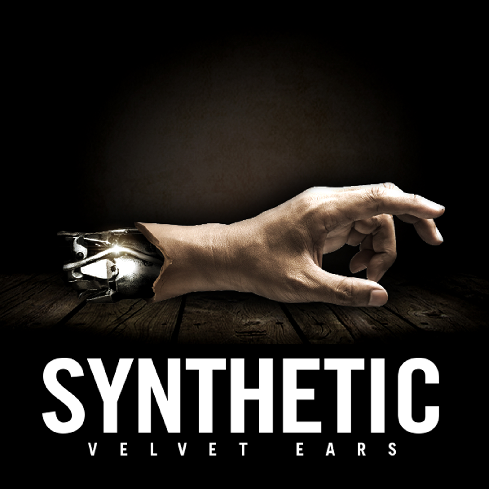 VE_Synthetic1600.jpg