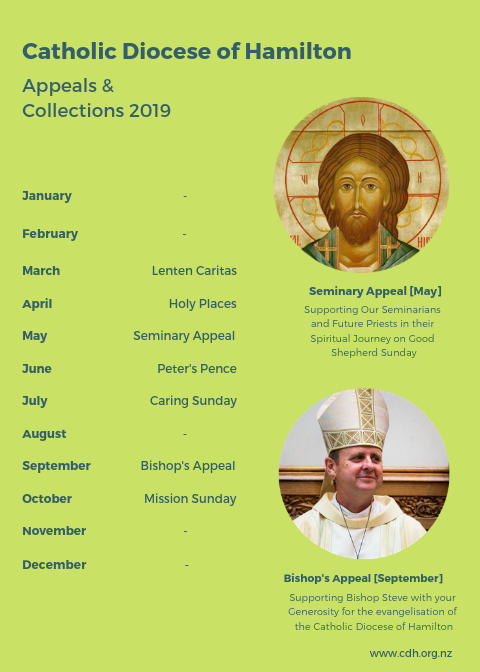 Appeals and Collections 2019.png