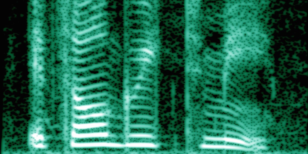 A spectrogram of the human voice. Image via Wikimedia Commons.