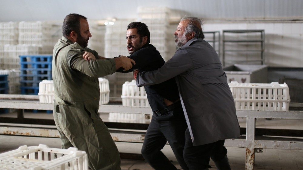 """""""No Date, No Signature"""" was among the most well-attended films at this year's Wisconsin Iranian Film Festival."""