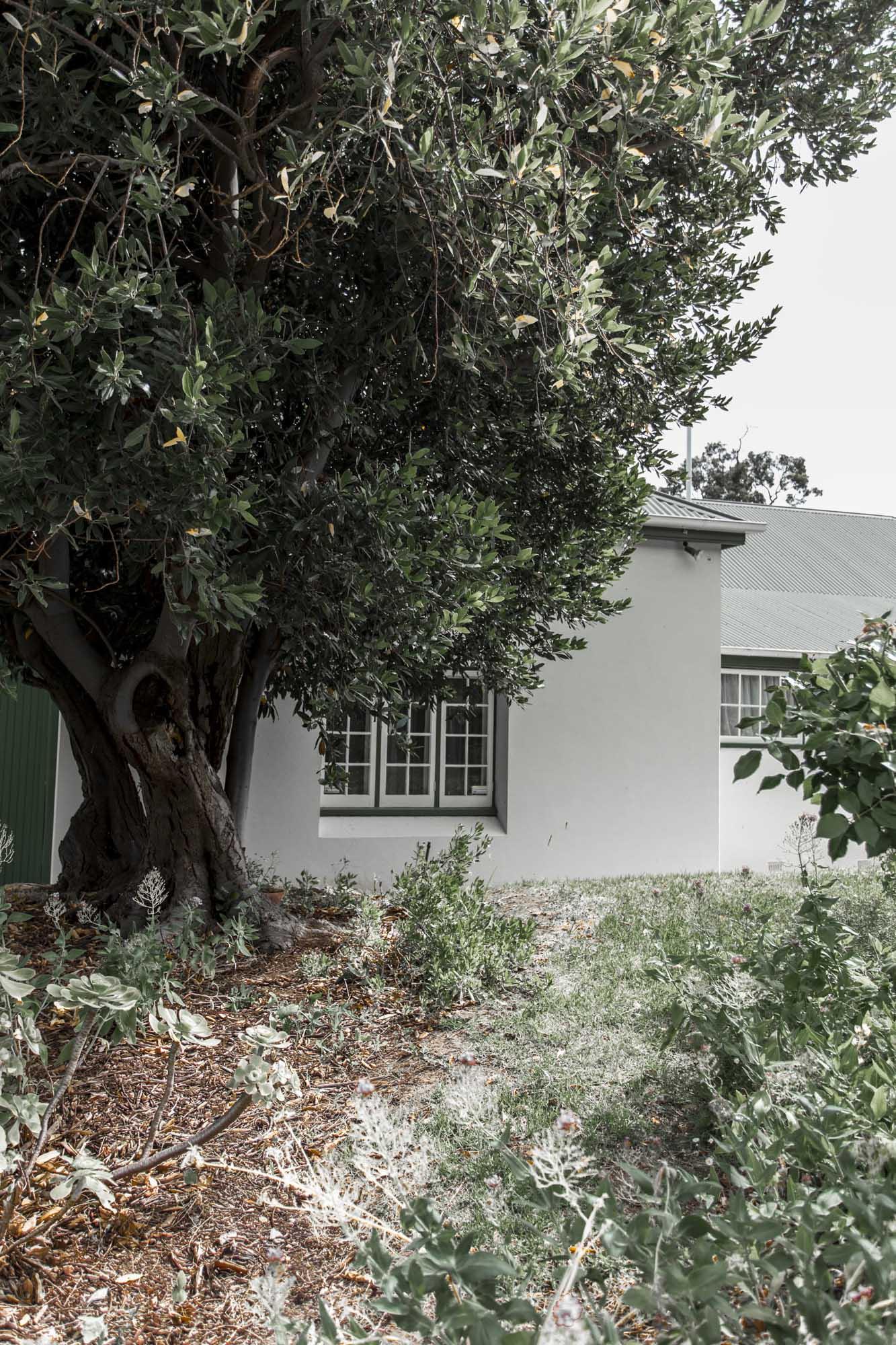 Valentina Perez Imaging Marybank Farm (19 of 48).JPG