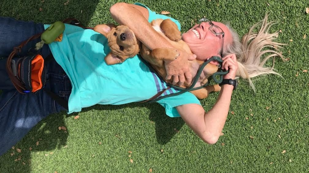 Happy Tails Newsletter - April & May 2019