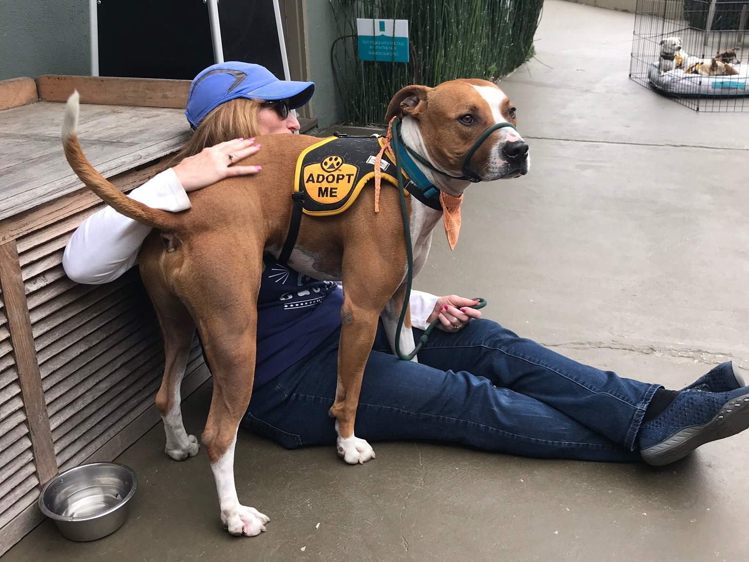 DAWG Volunteer Pam Lombardo and Nashville at the adoption event he found his forever home at!