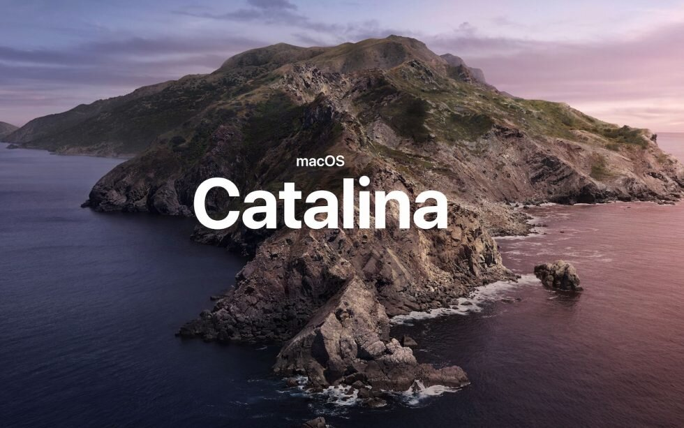 New-in-Catalina-photo-980x613.jpg