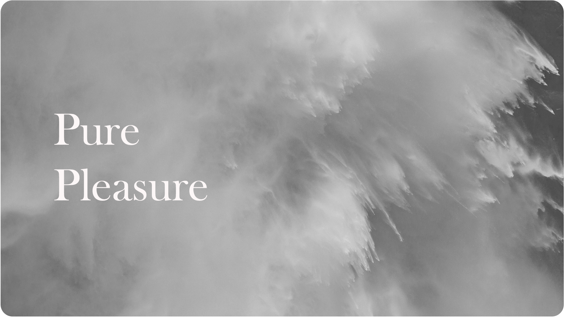 2.  Pure Pleasure | 14.01.18