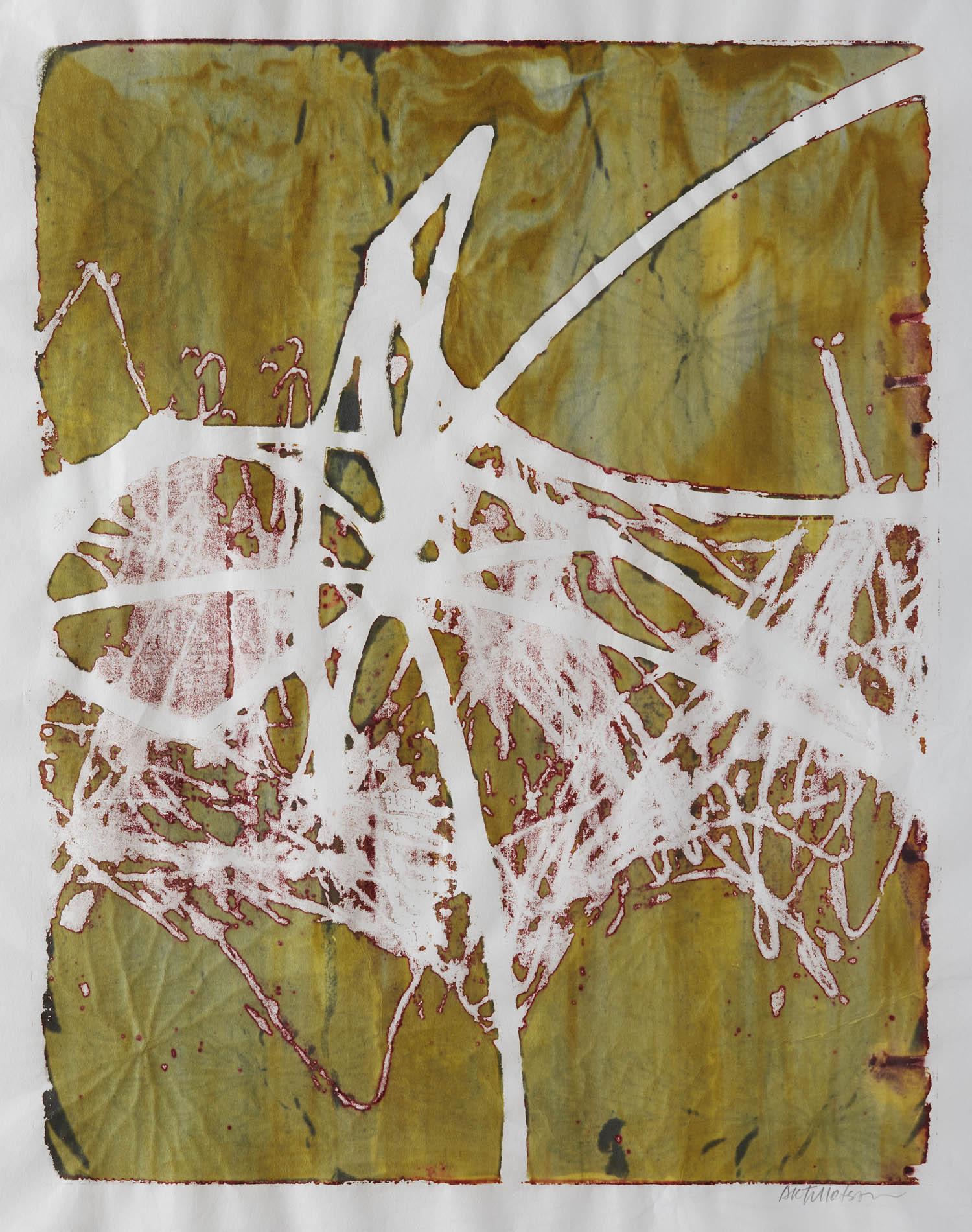 Seeking Clarity by St. Paul, MN multimedia artist, Amy Tillotson