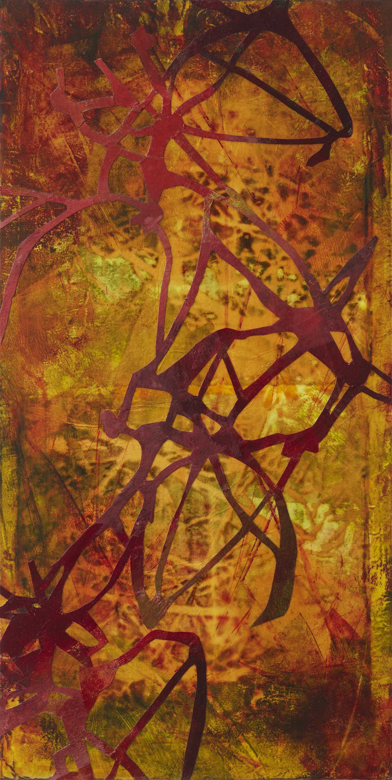 Systems Within by St. Paul, MN multimedia artist, Amy Tillotson
