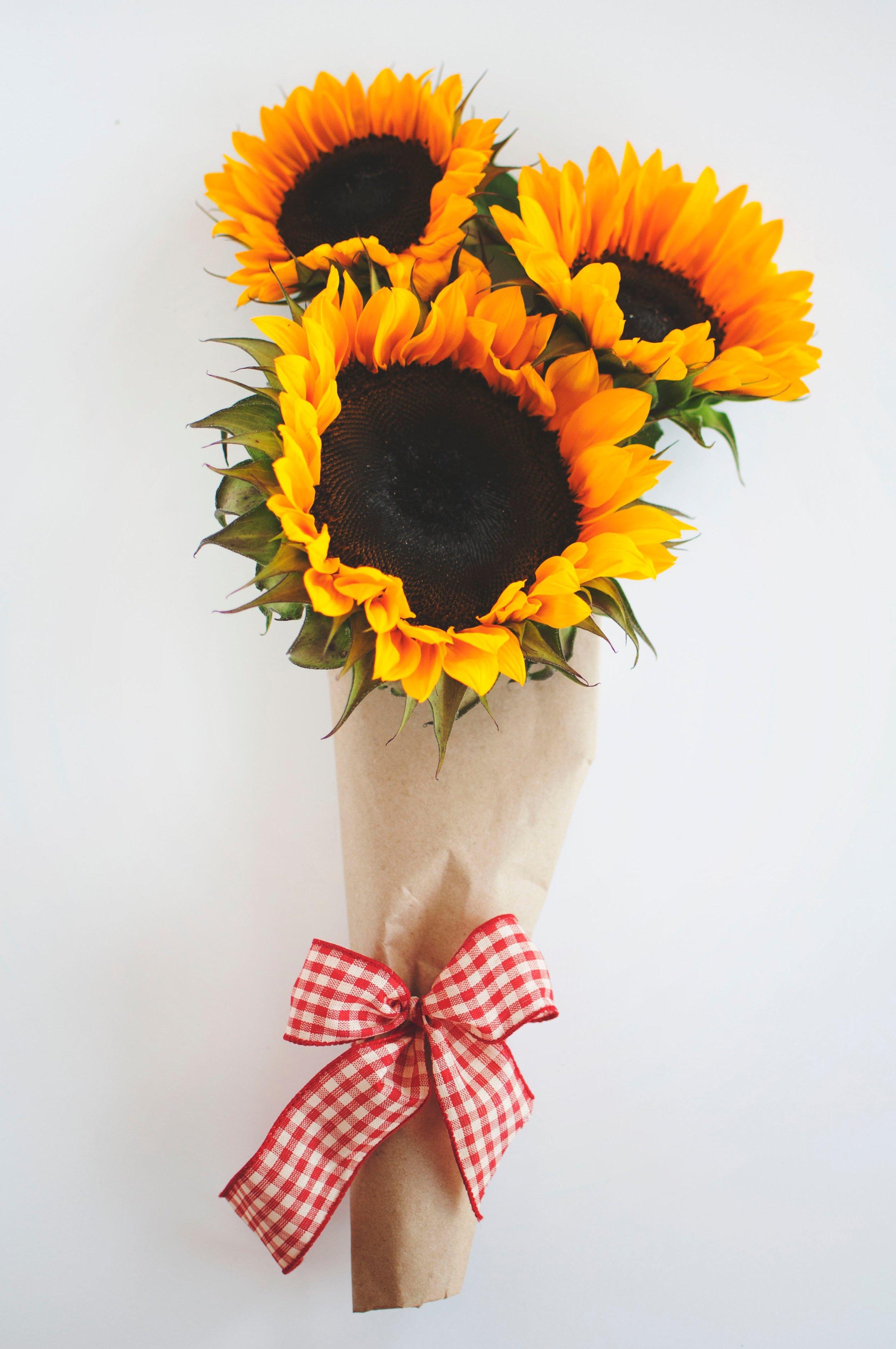 Wrapped Sunflower Bouquet Mad Lizzie S Flower Farm