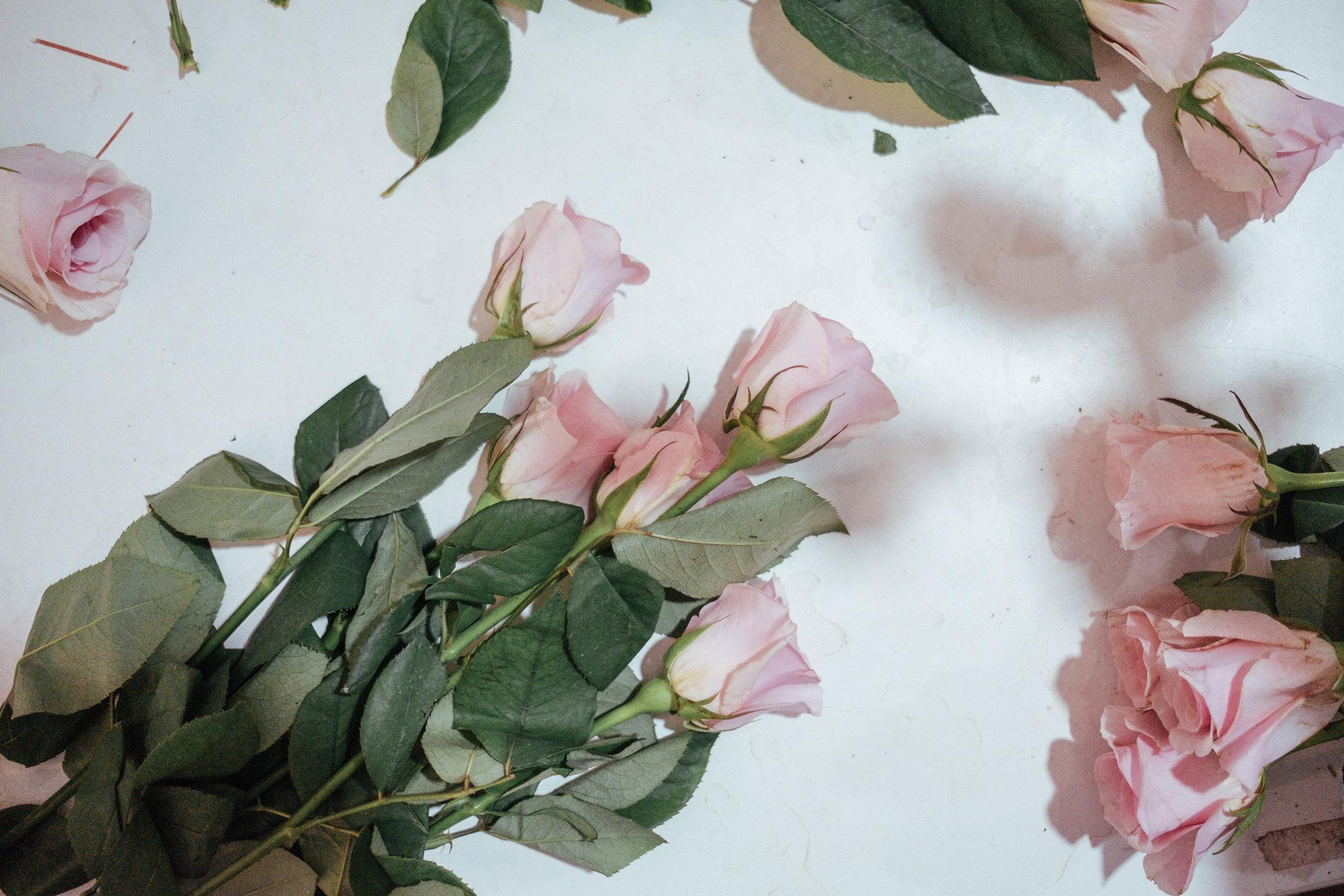 a-better-florist-roses