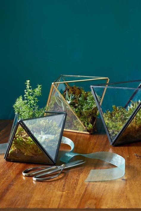 Faceted Terrariums