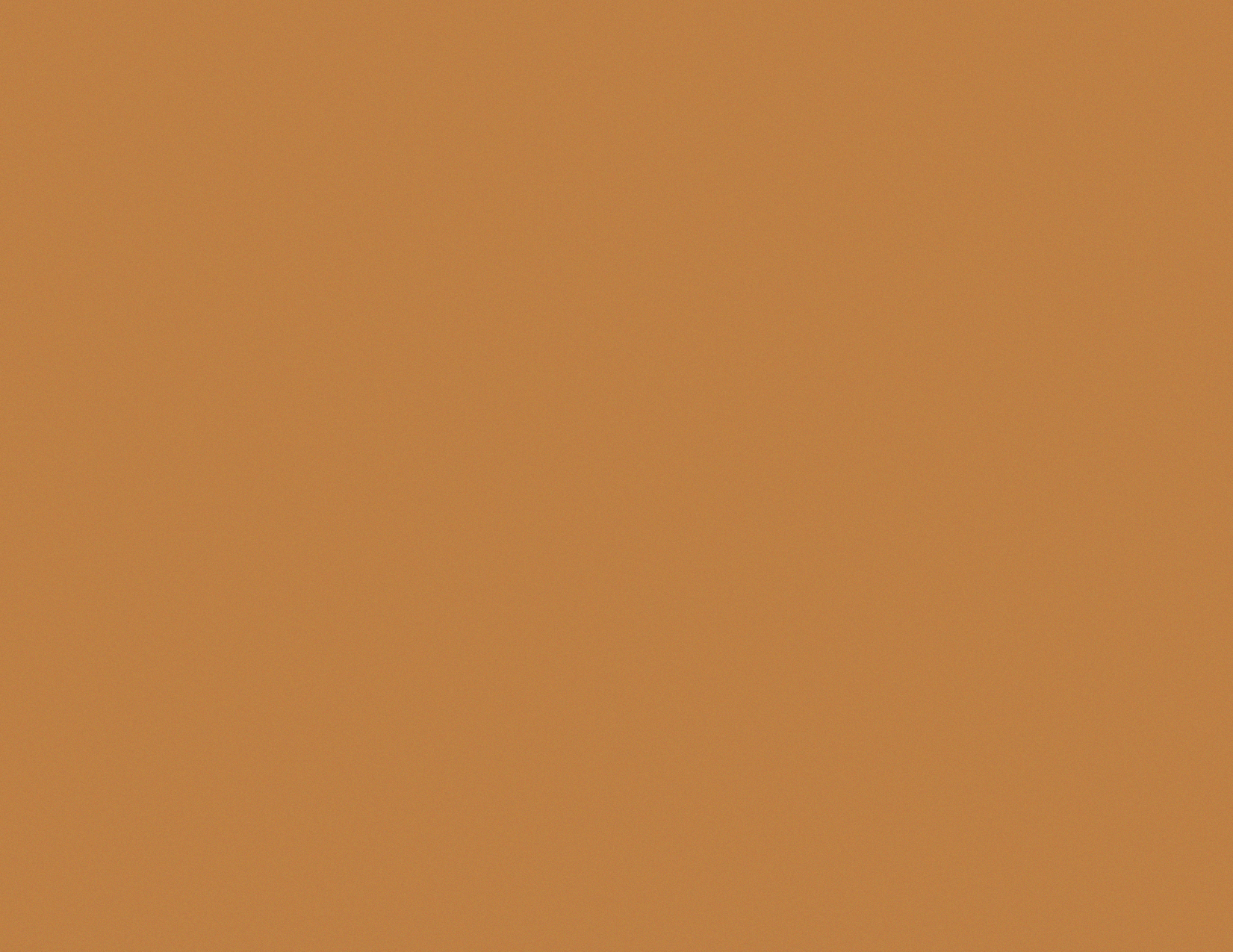 Color-Bronzed.png
