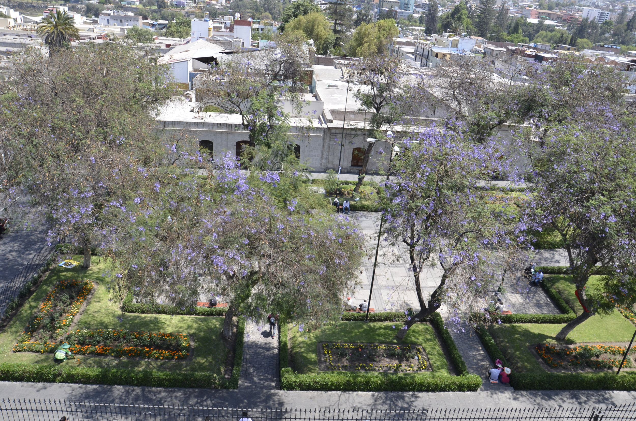View into a nearby park from the bell tower of a convent