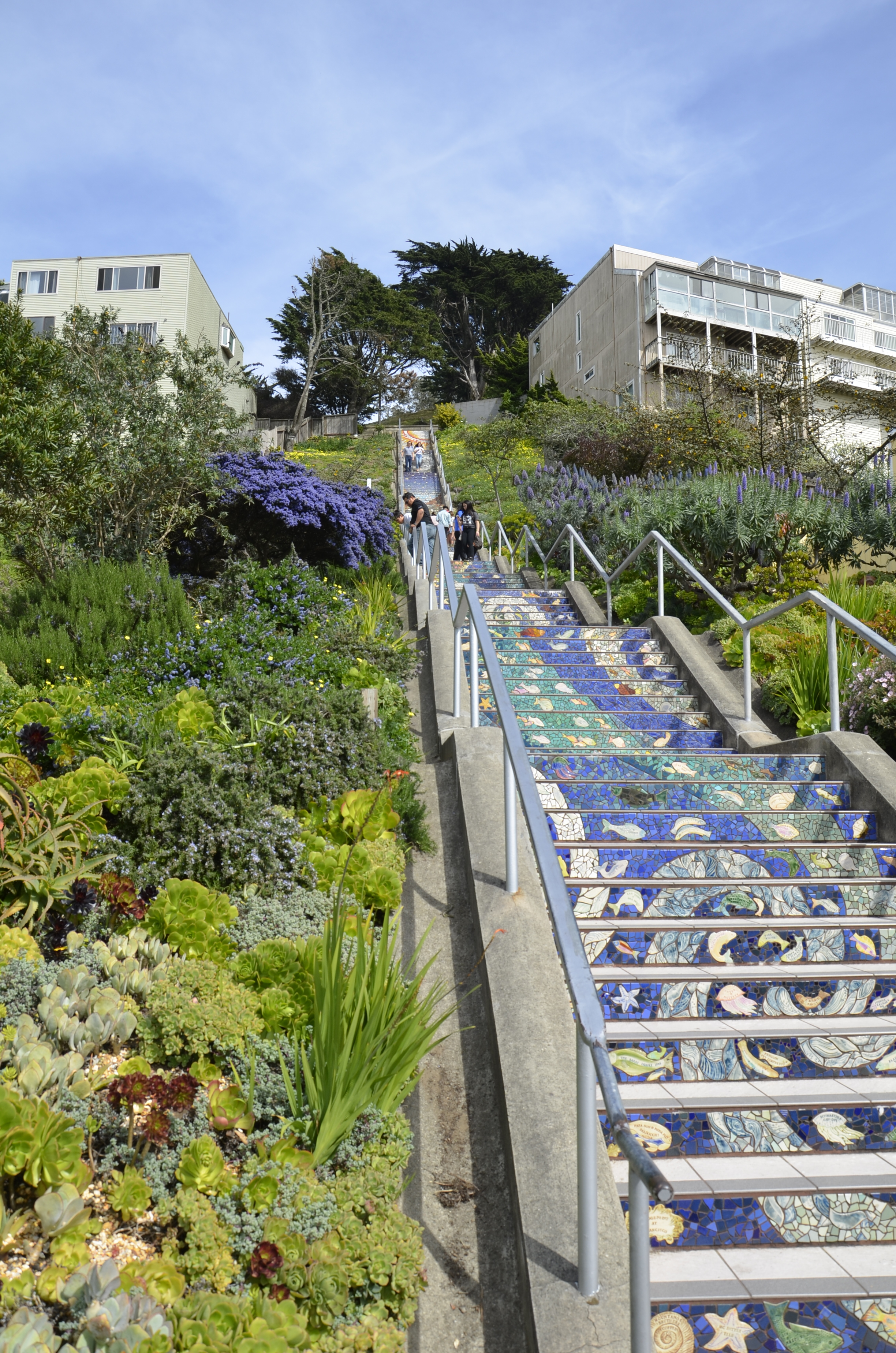 """The 16th Ave. """"Tiled Steps"""" - a tourist attraction we hadn't even been aware of."""
