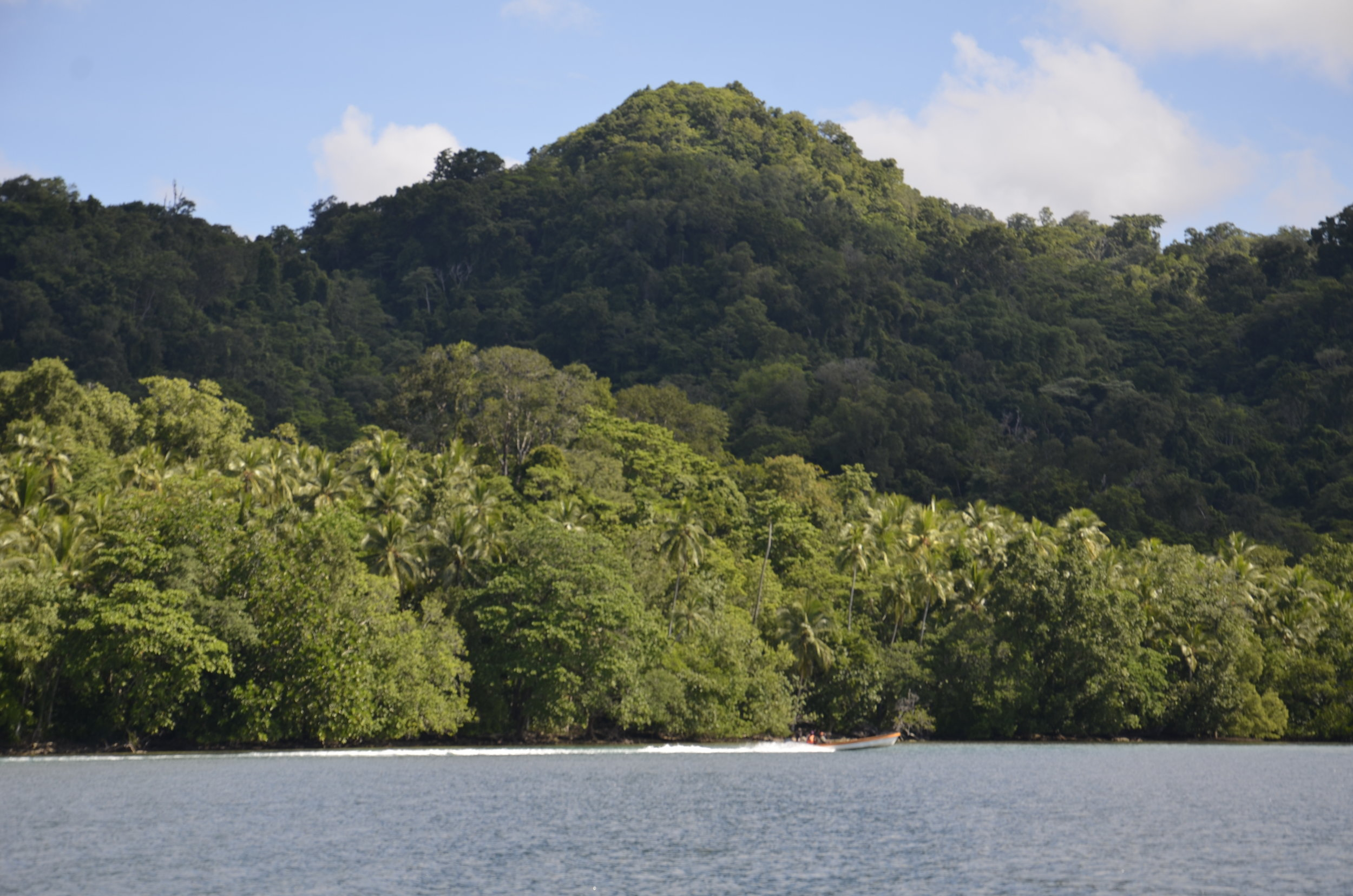 The islands varied in size and if inhabited or not, but all were packed with vegetation.