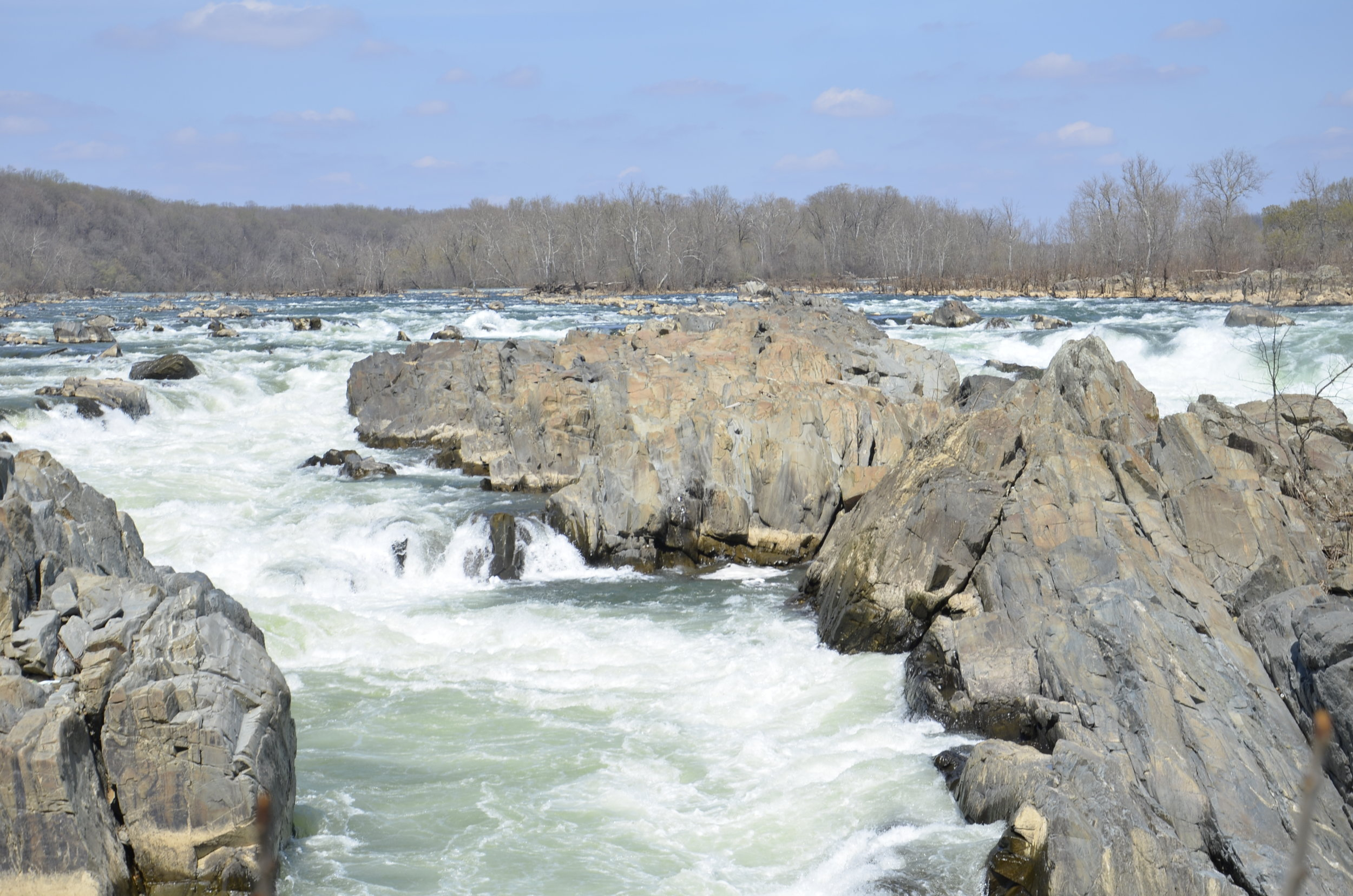 _DSC1597 Great Falls of Potomac.JPG